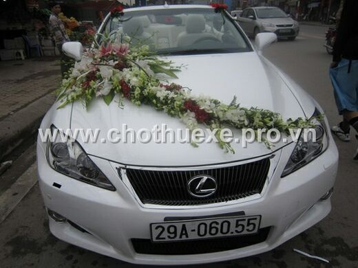 xe cưới Lexus màu trắng Lexus IS 250