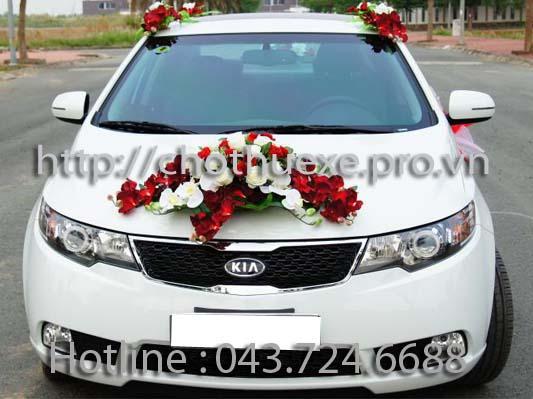 Xe cưới màu trắng KIA Forte